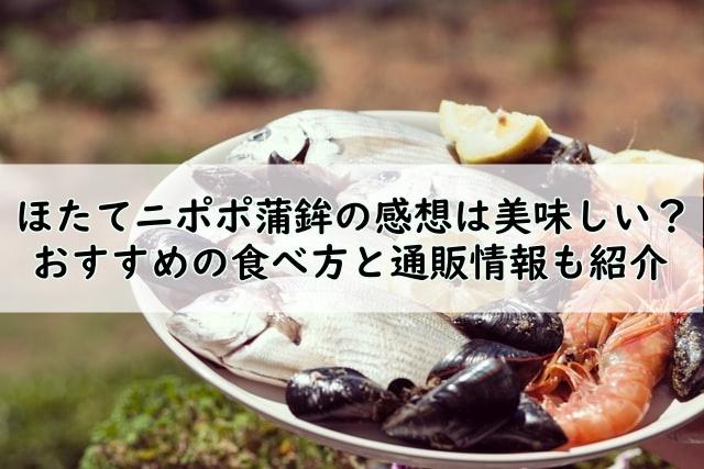 ほたてニポポ蒲鉾の感想は美味しい!?おすすめの食べ方と通販情報も紹介